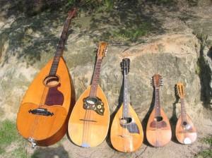 La famille des mandolines napolitaines